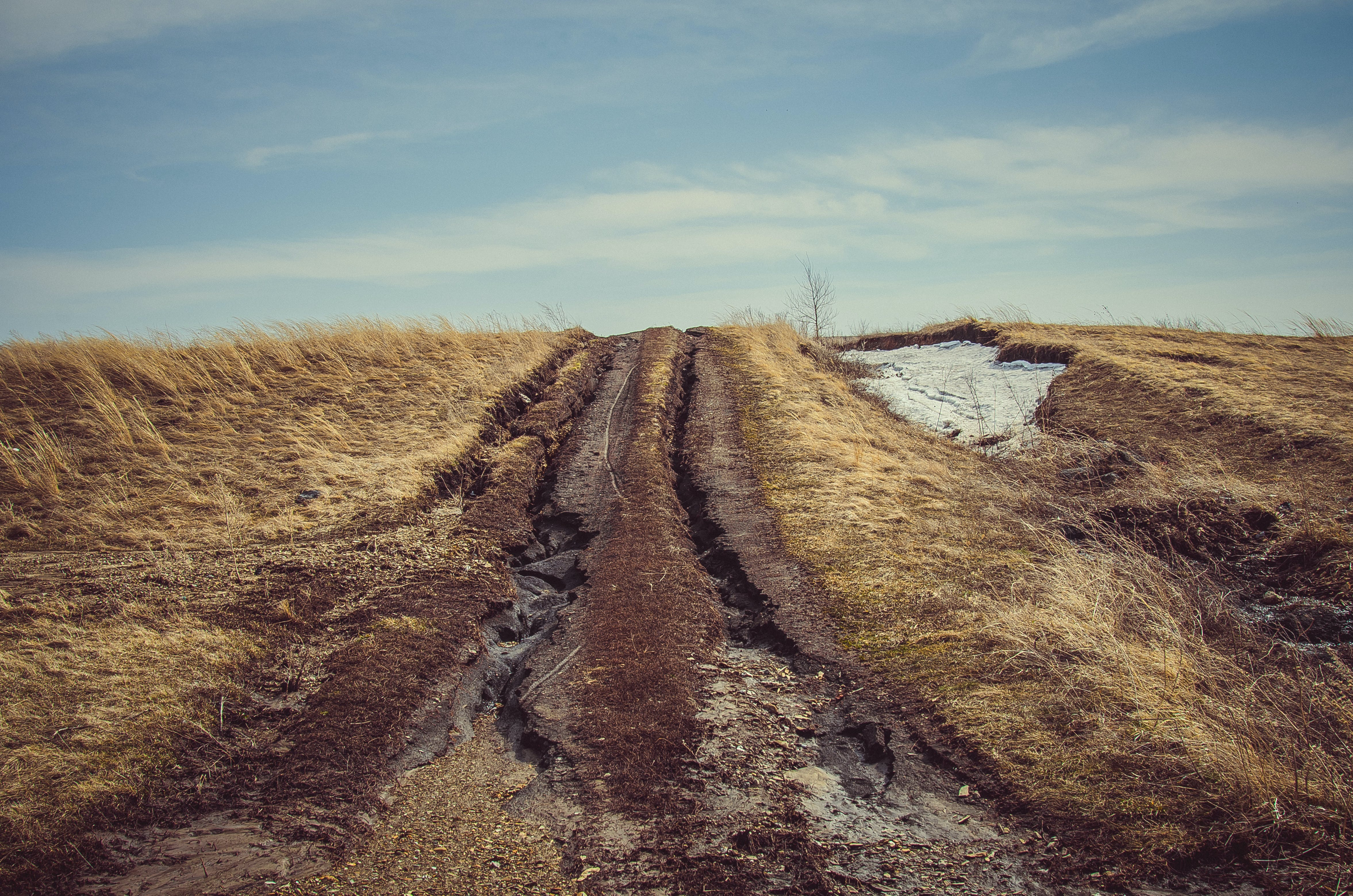 Brown Pathway Between Grass Field