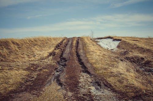 Foto d'estoc gratuïta de camí, camp, carretera, cel