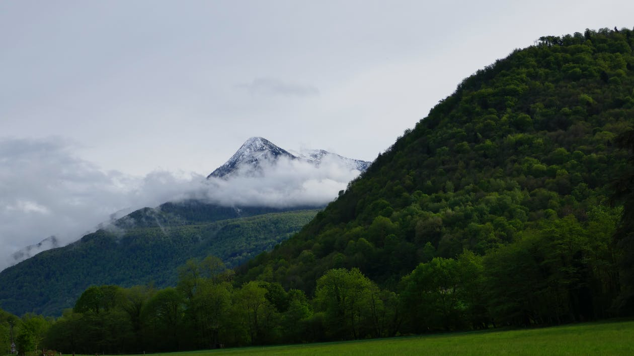 cagire mountain, βουνό, γρασίδι