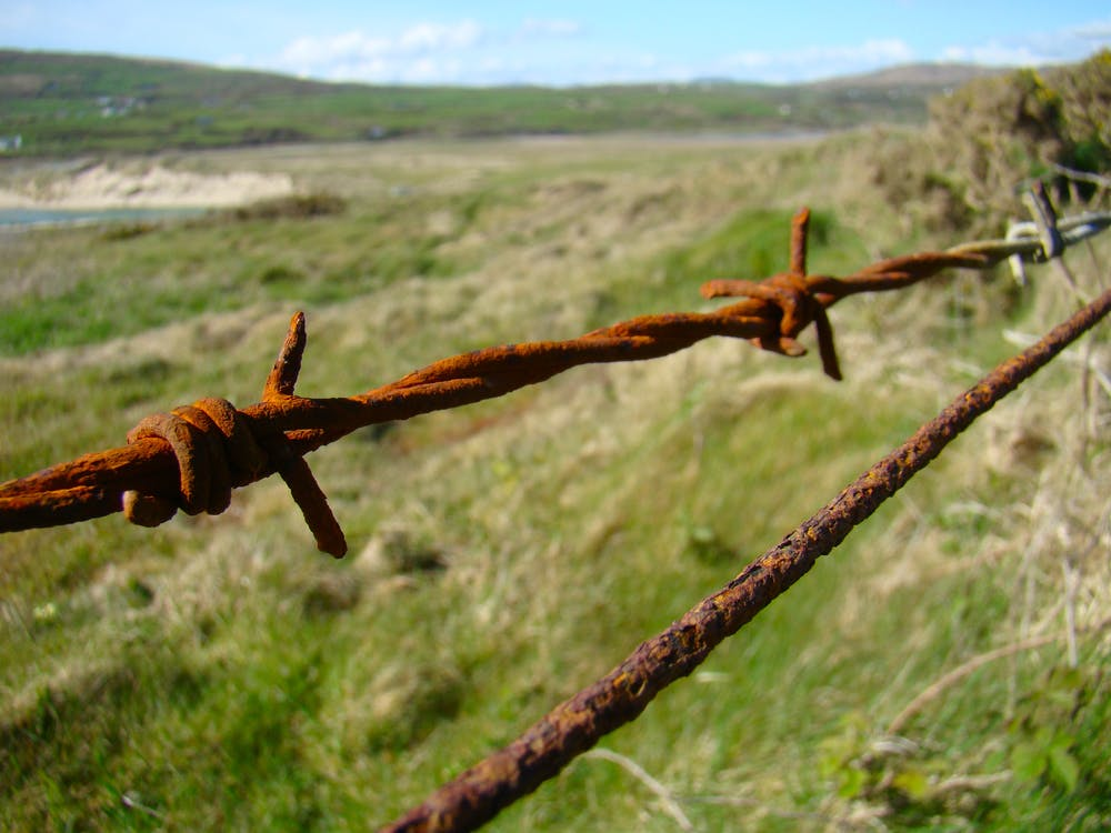 Free stock photo of barb wires, rust