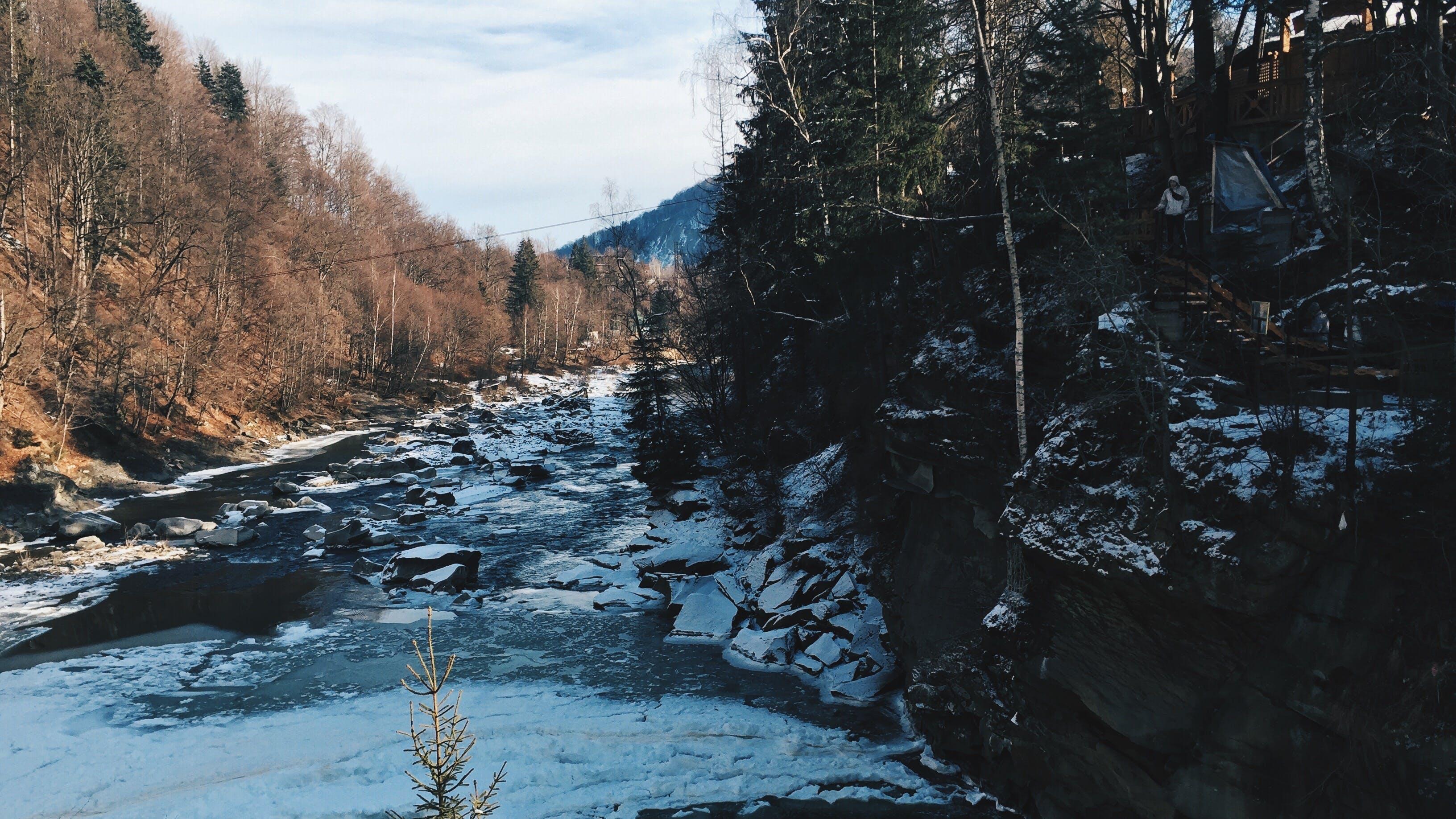 Free stock photo of mountains, trees, mountain, ice