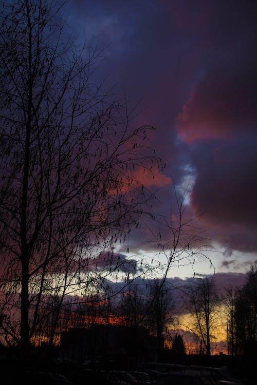 Ilmainen kuvapankkikuva tunnisteilla aamu, aamunkoitto, aavemainen, auringonlasku