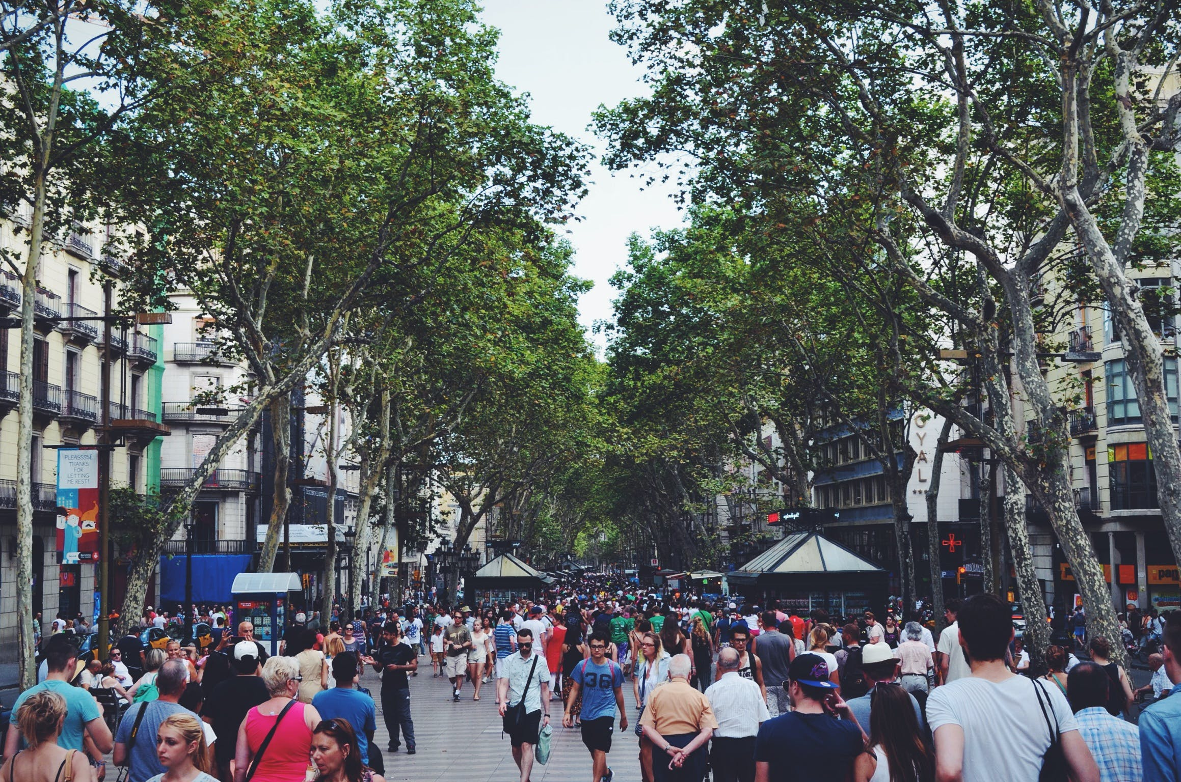 Imagine de stoc gratuită din aglomerație, arbori, clădiri, comunitate