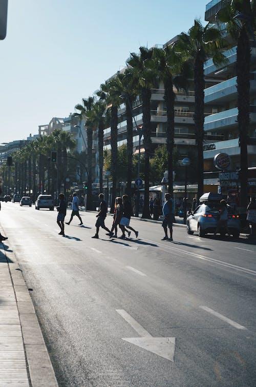 Foto profissional grátis de à beira-mar, automóvel, Espanha, estrada
