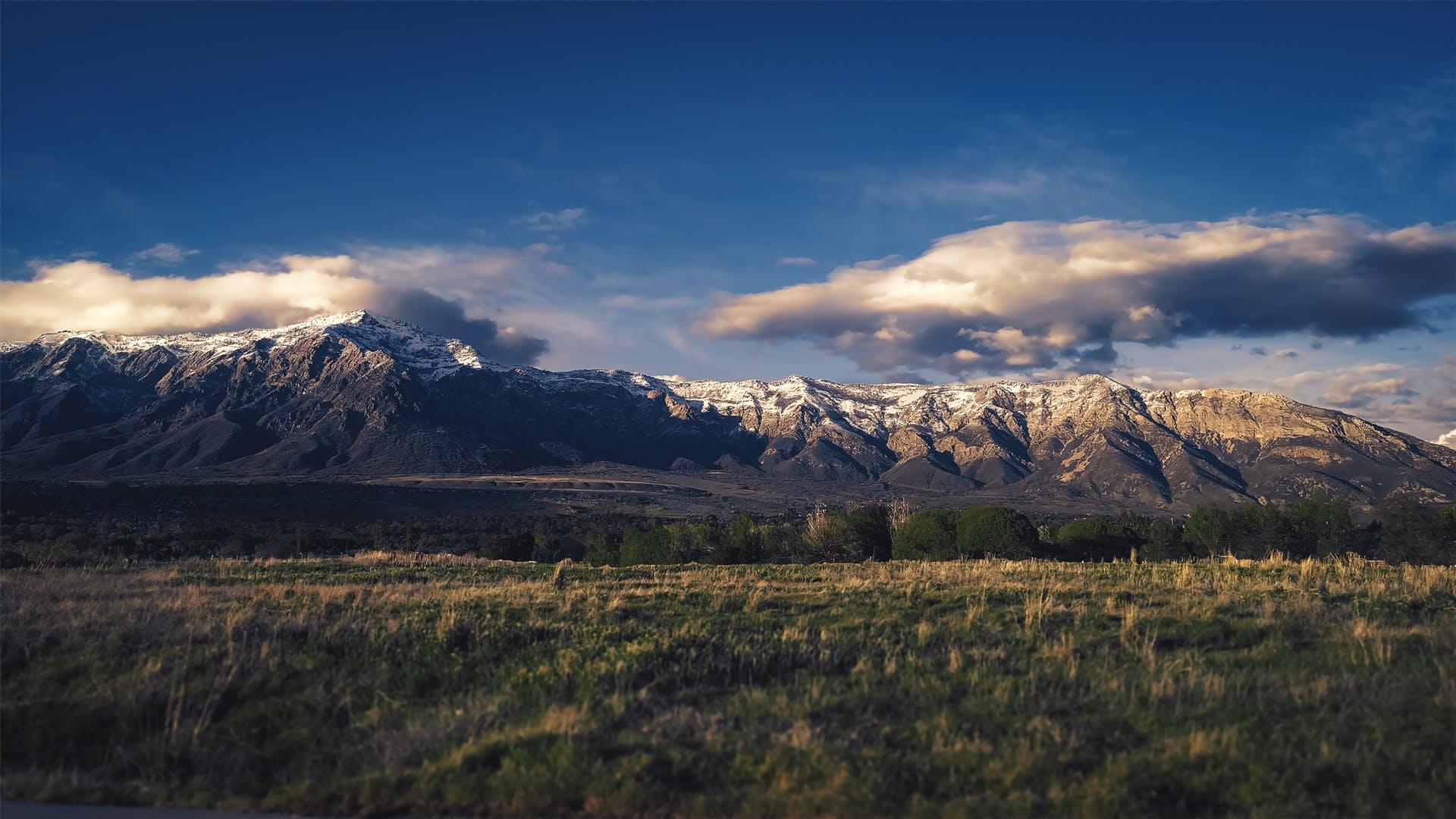 Foto d'estoc gratuïta de camp, capvespre, cel, herba