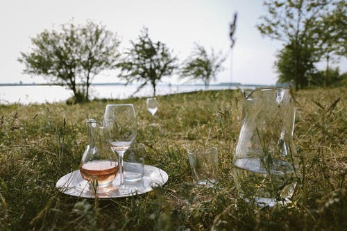 Clear Glass Pitcher and Wine Glass on Grass at Daytime
