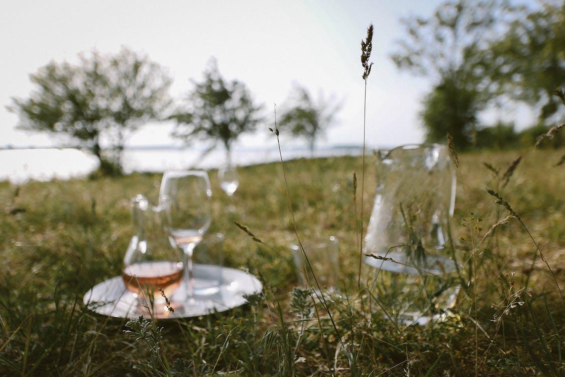 건초, 나무, 로제 와인
