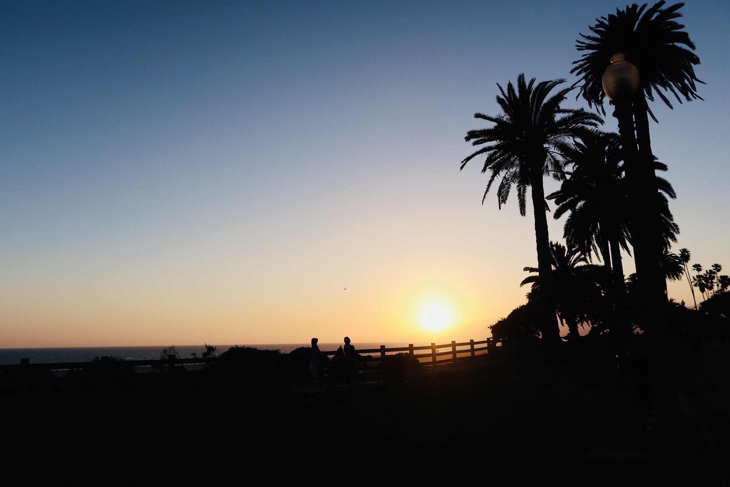 Free stock photo of dusk, silhouette, sun, sunset