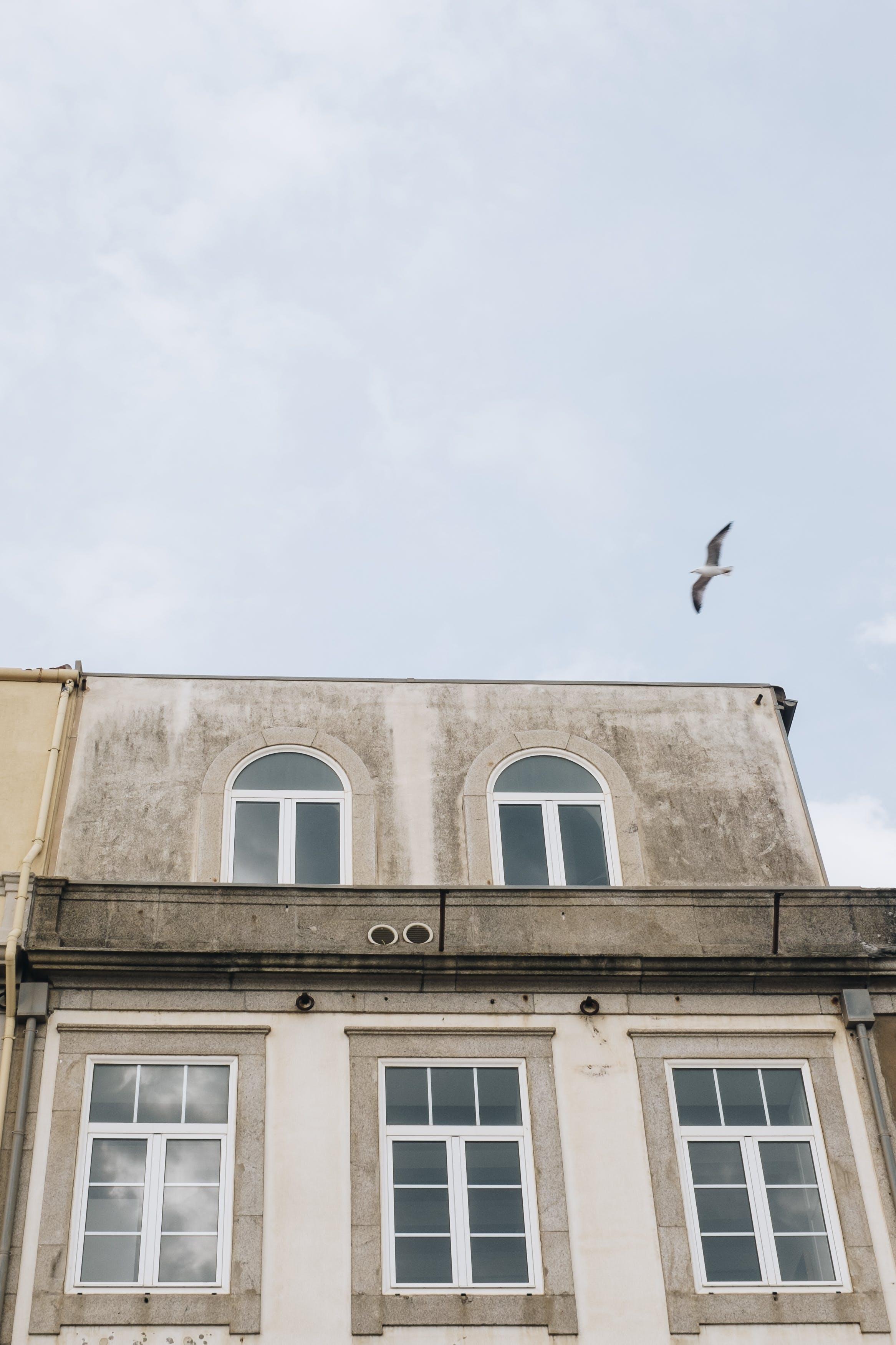 apartmán, architektura, budova