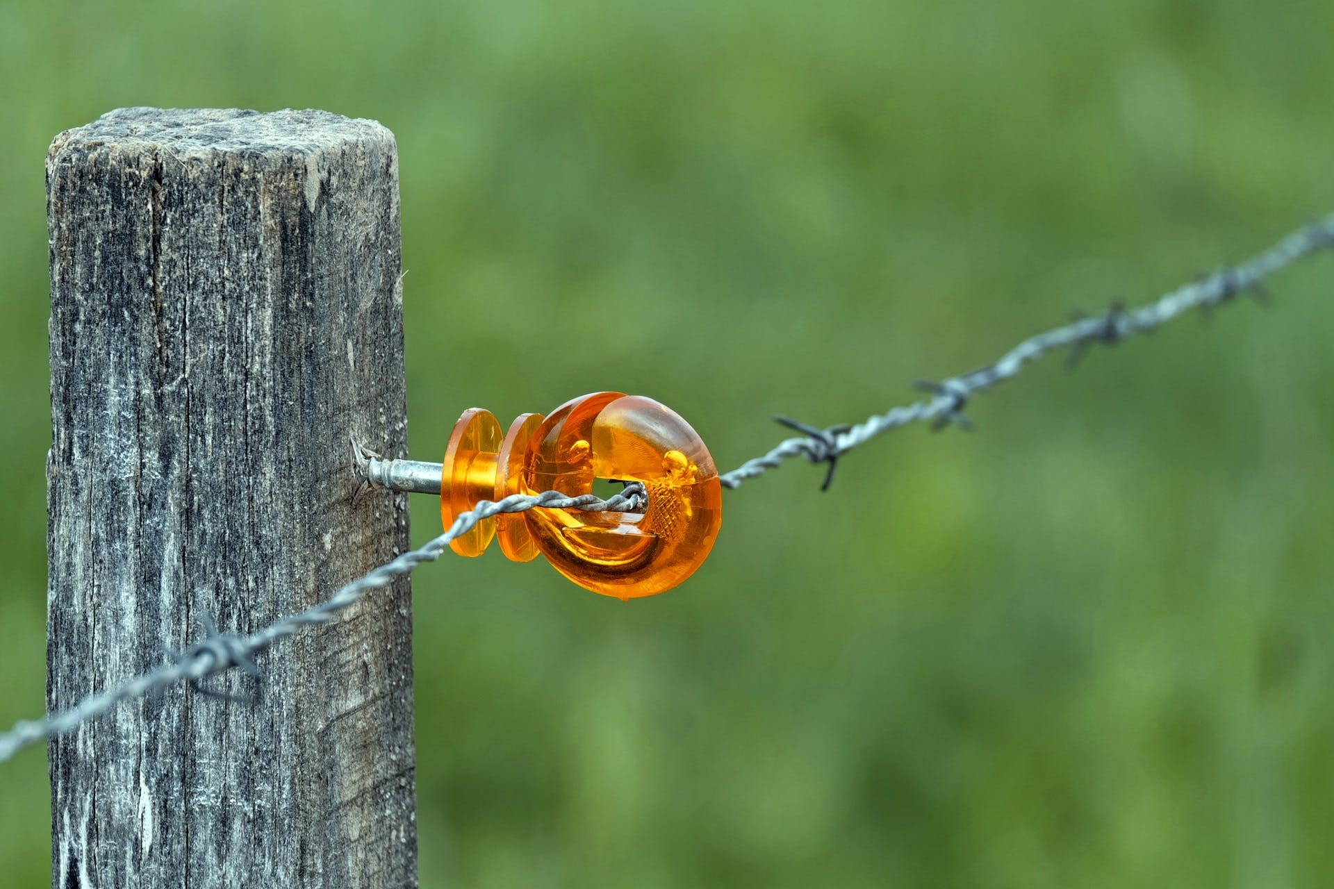 Free stock photo of barbed wire, plastic, pasture, royalty free