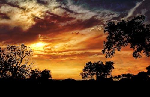 Безкоштовне стокове фото на тему «alentejo, Захід сонця, небо, Португалія»