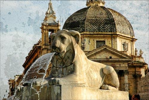 Безкоштовне стокове фото на тему «вода, камінь, купол, лев»
