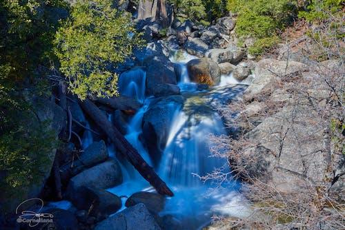 Photos gratuites de cascade