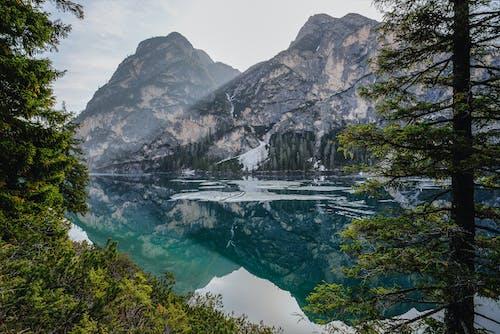 Foto profissional grátis de água, ao ar livre, árvores, beira do lago