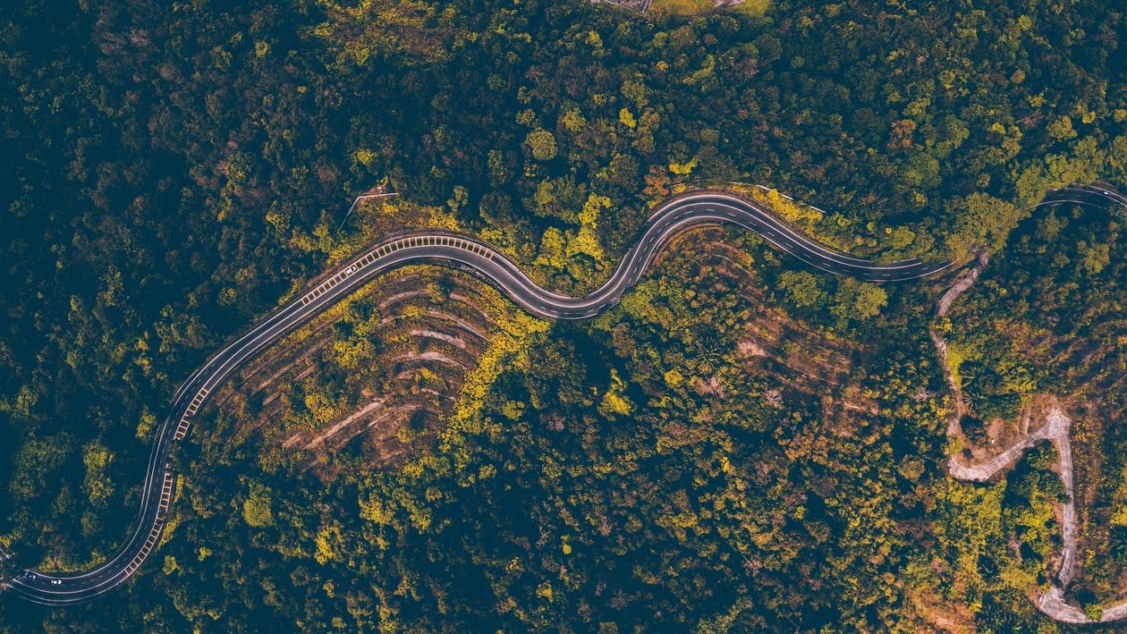 Aerial Photography of Road Beside Forest