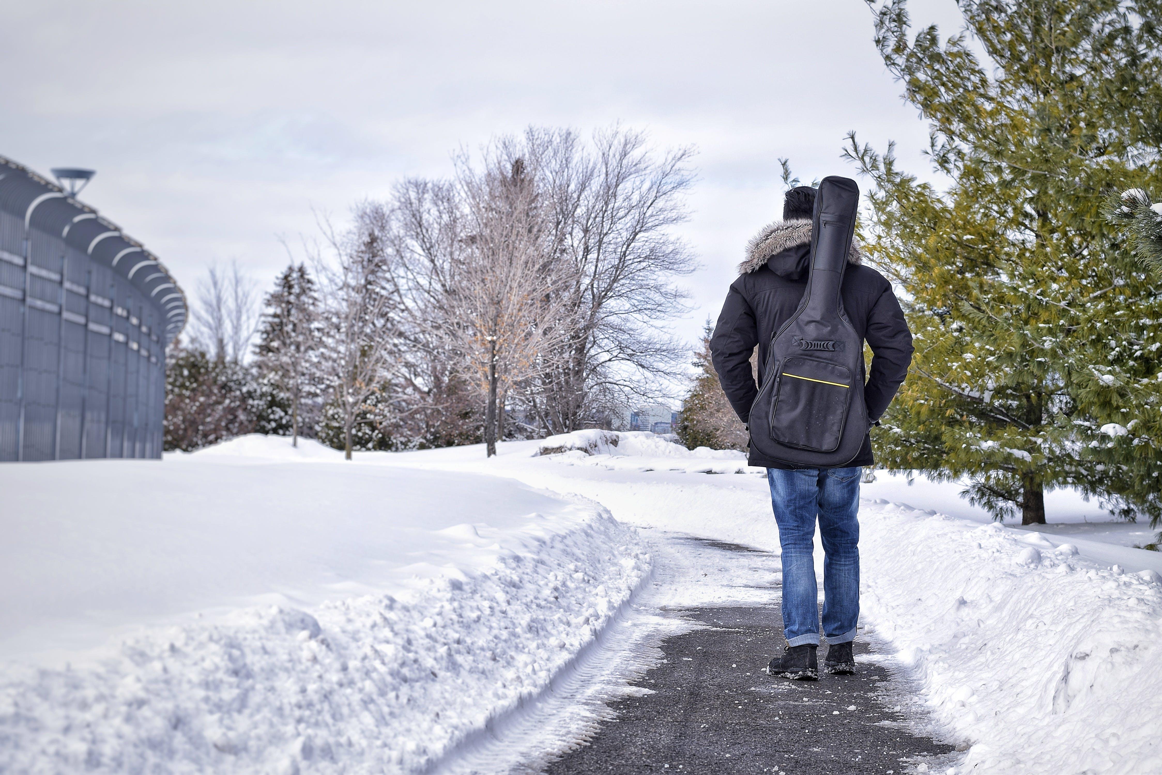 Gratis arkivbilde med årstid, canada, dagslys, forkjølelse