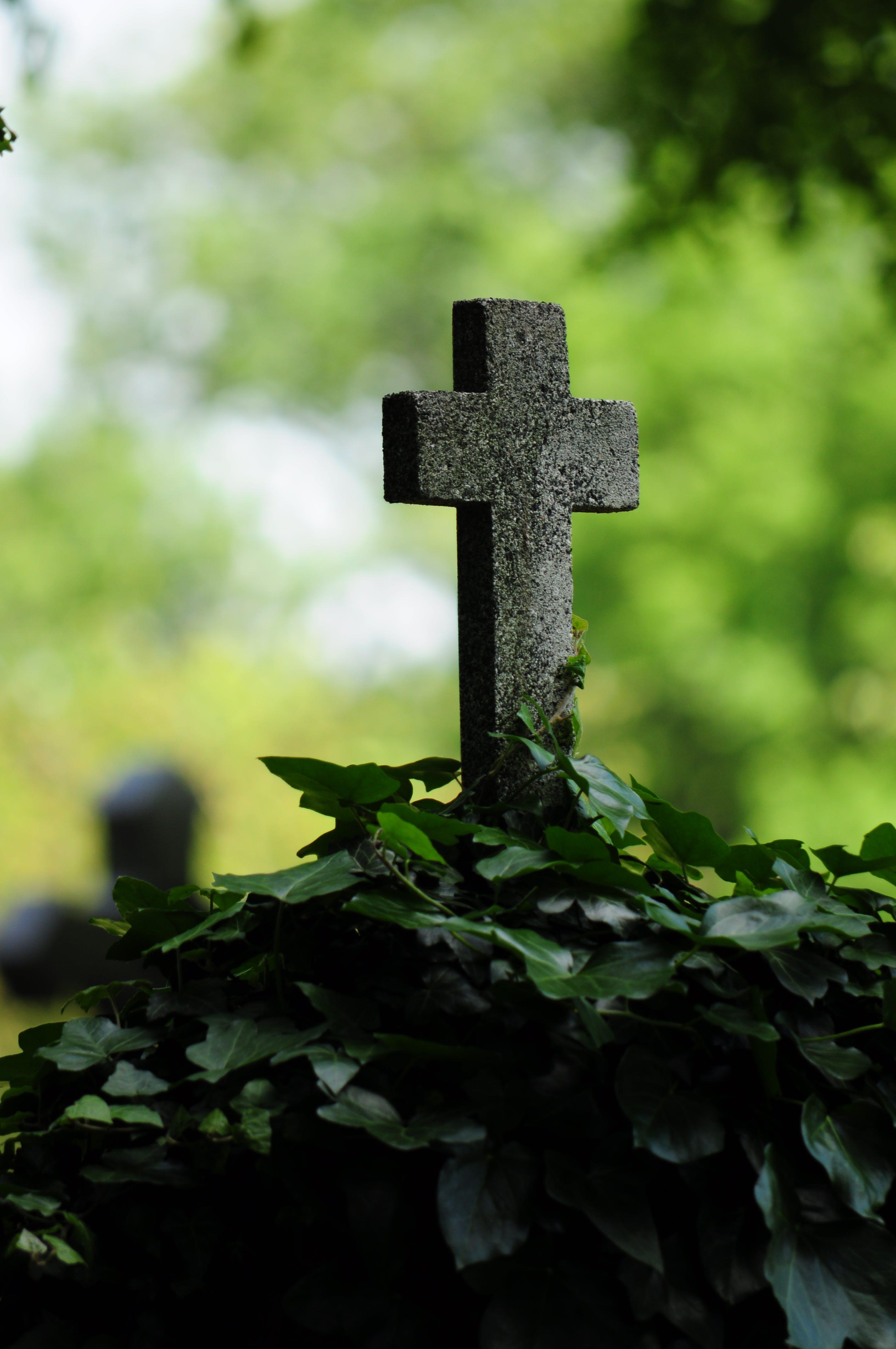 Ảnh lưu trữ miễn phí về bia, nghĩa trang hoành tráng, phần mộ, vượt qua