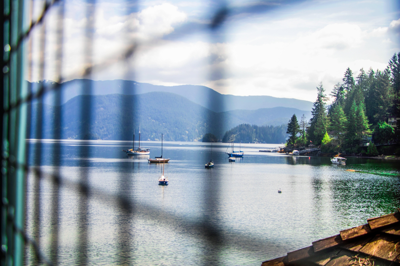 Free stock photo of boat, boats, city park, lake
