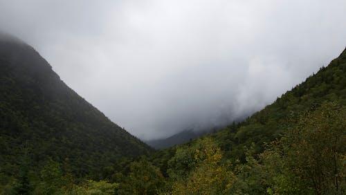 Základová fotografie zdarma na téma hory, malebný, mlha, mraky