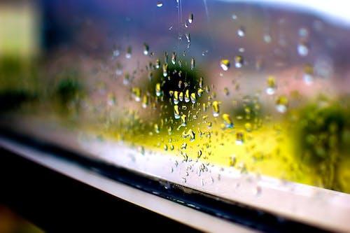 Photos gratuites de gouttes de pluie