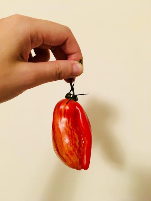 Безкоштовне стокове фото на тему «помідор»