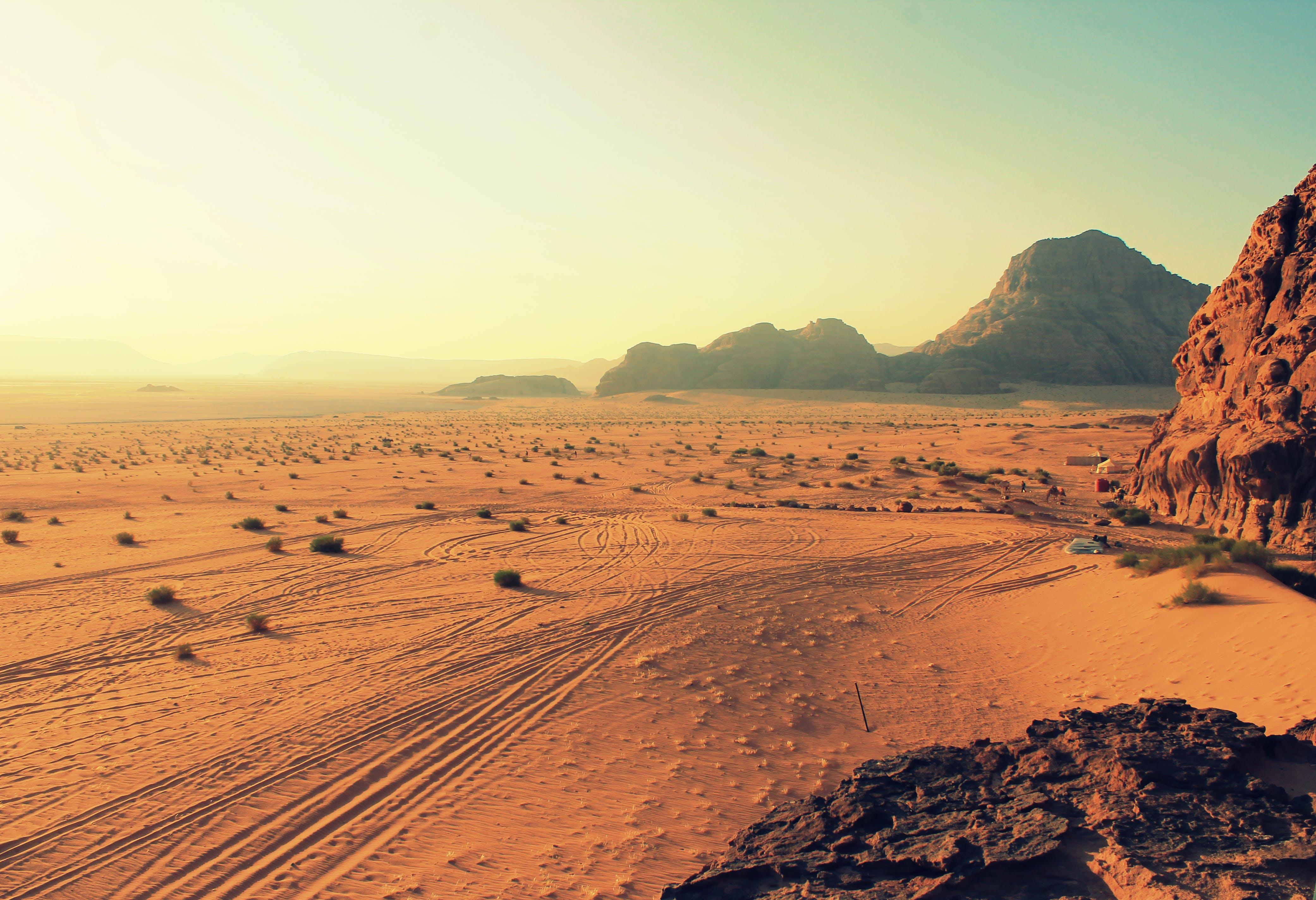 Foto profissional grátis de alvorecer, arbustos, areia, arenito