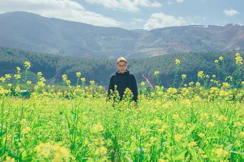 Imagine de stoc gratuită din băiat, bărbat, câmp, câmp de flori