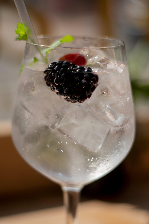 Free stock photo of alcohol, blackberries, blackberry, drinks