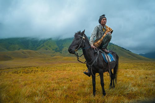 Photography of a Person Riding a Horse