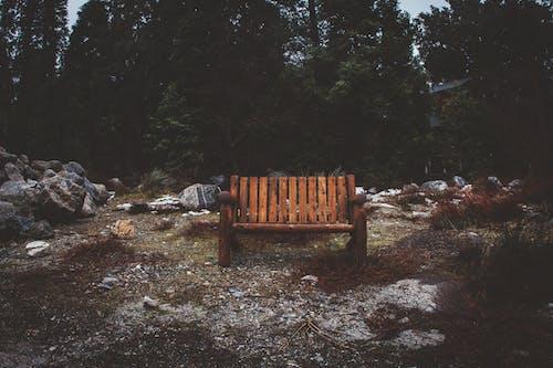 Ilmainen kuvapankkikuva tunnisteilla istuin, kivet, penkki, puut