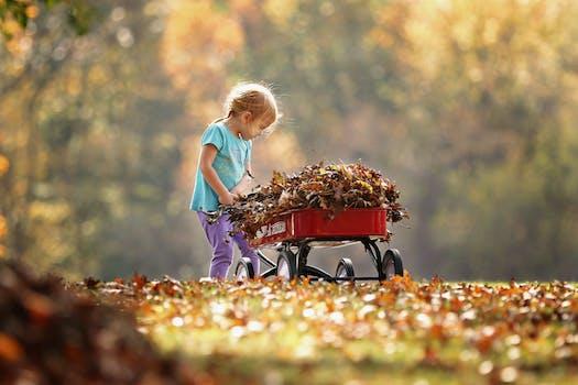 Photography of Child Pushing the Wagon
