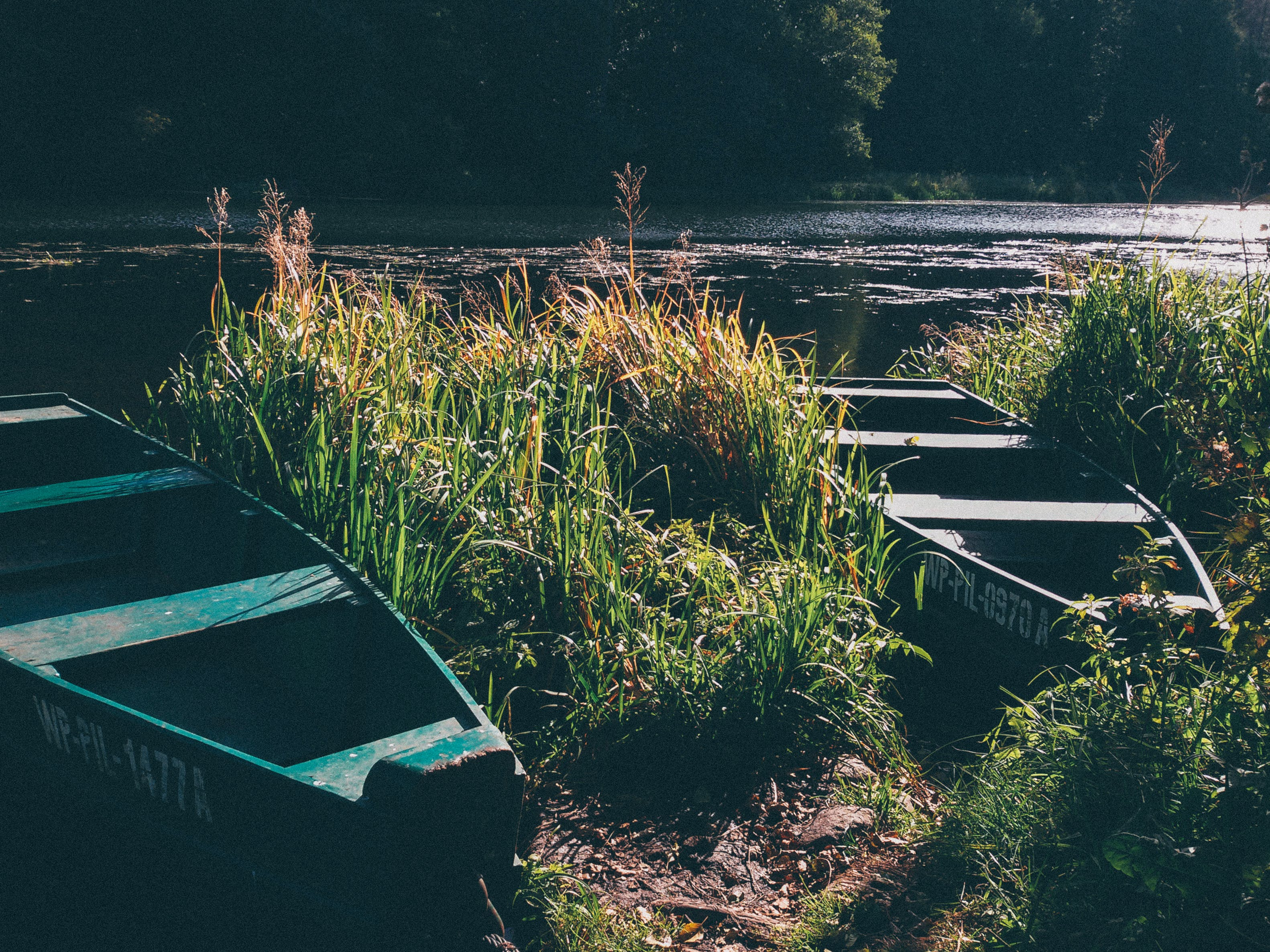 boat, nature, river