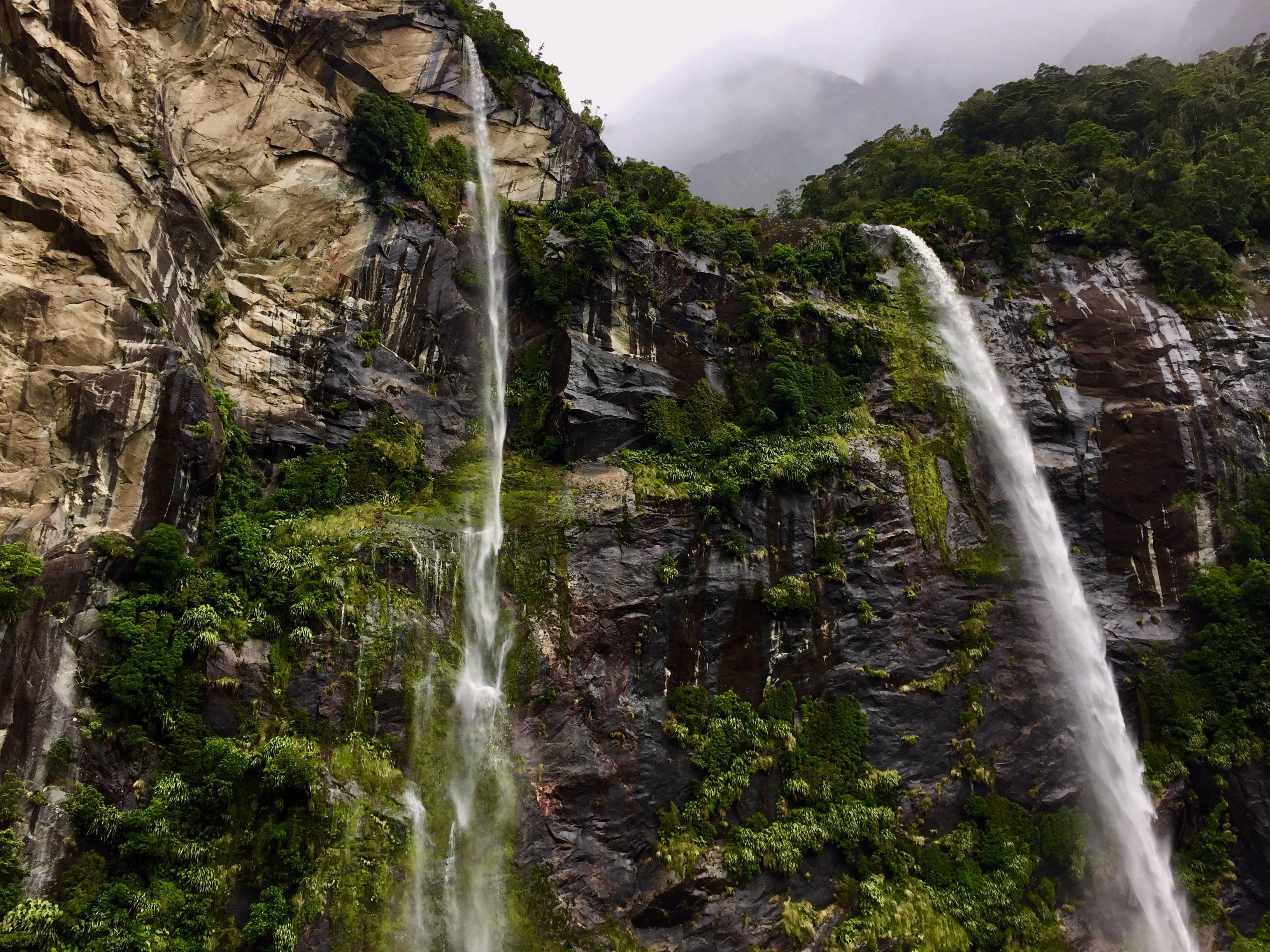 Gratis stockfoto met berg, bomen, bossen, cascade