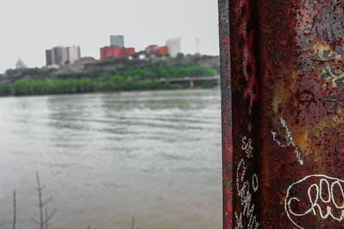 Безкоштовне стокове фото на тему «графіті, місто, фокус»