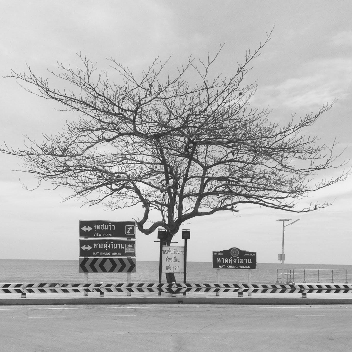 Free stock photo of beach, bw, monochrome, monochrome photography