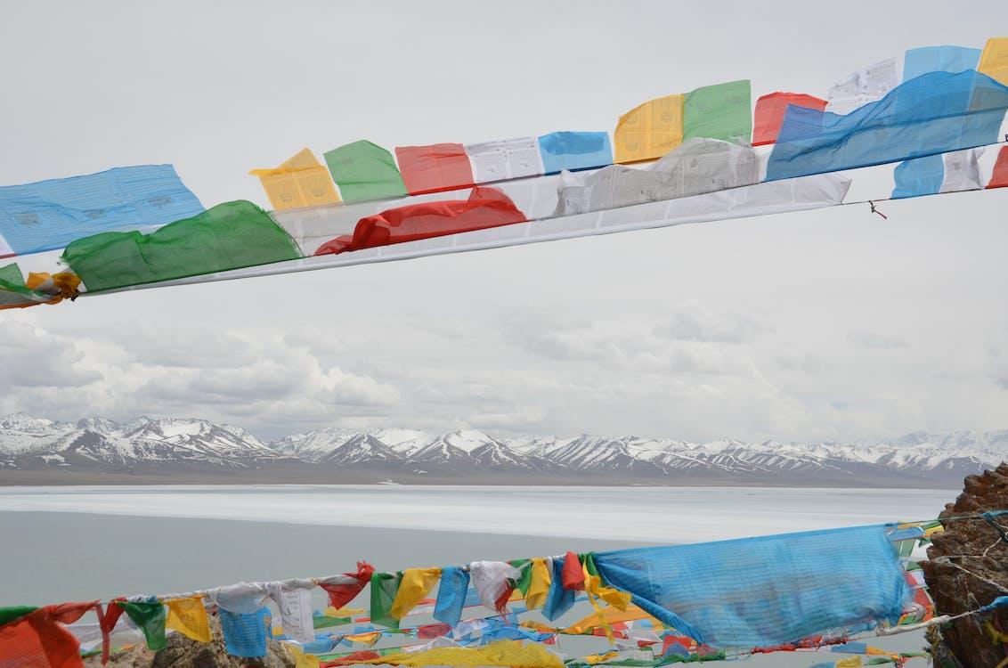 Free stock photo of tibet