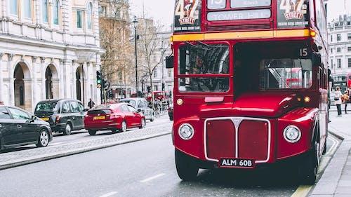 Základová fotografie zdarma na téma auta, červený autobus, krajina, Londýn