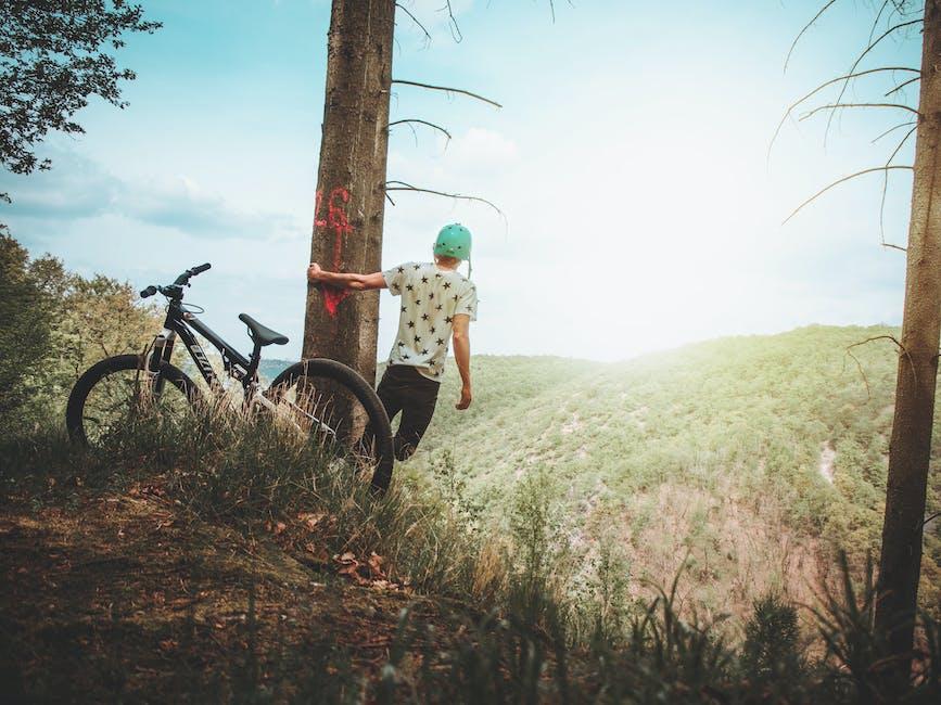Man holding tree enjoying the view mountain