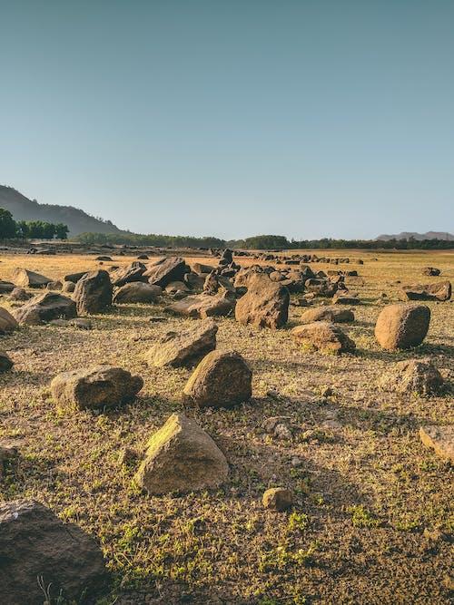 Free stock photo of arid, daylight, desert, dry
