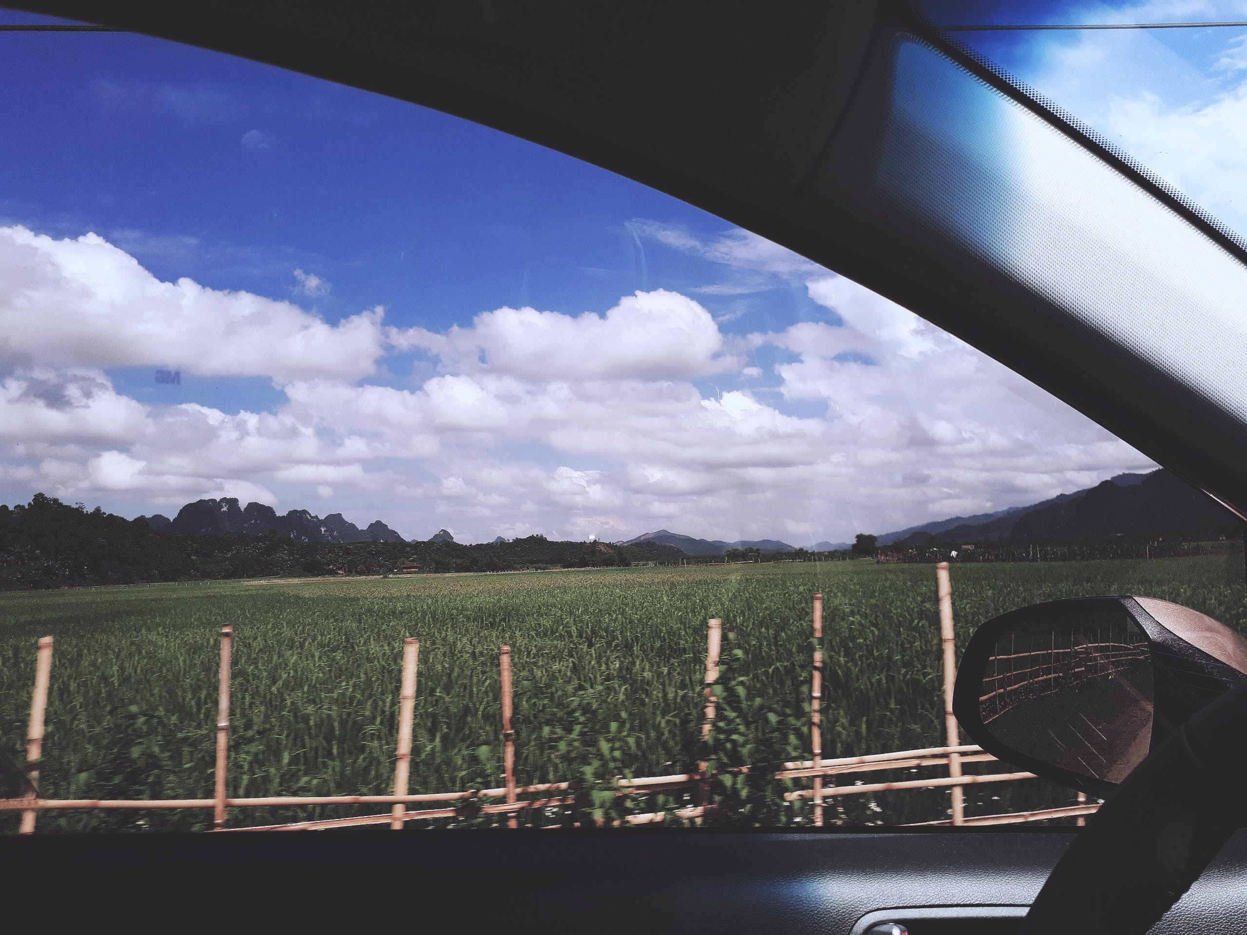Free stock photo of blue sky, car, cloud, corn field