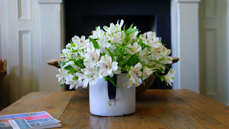 White Petaled Flower on White Flower Vase