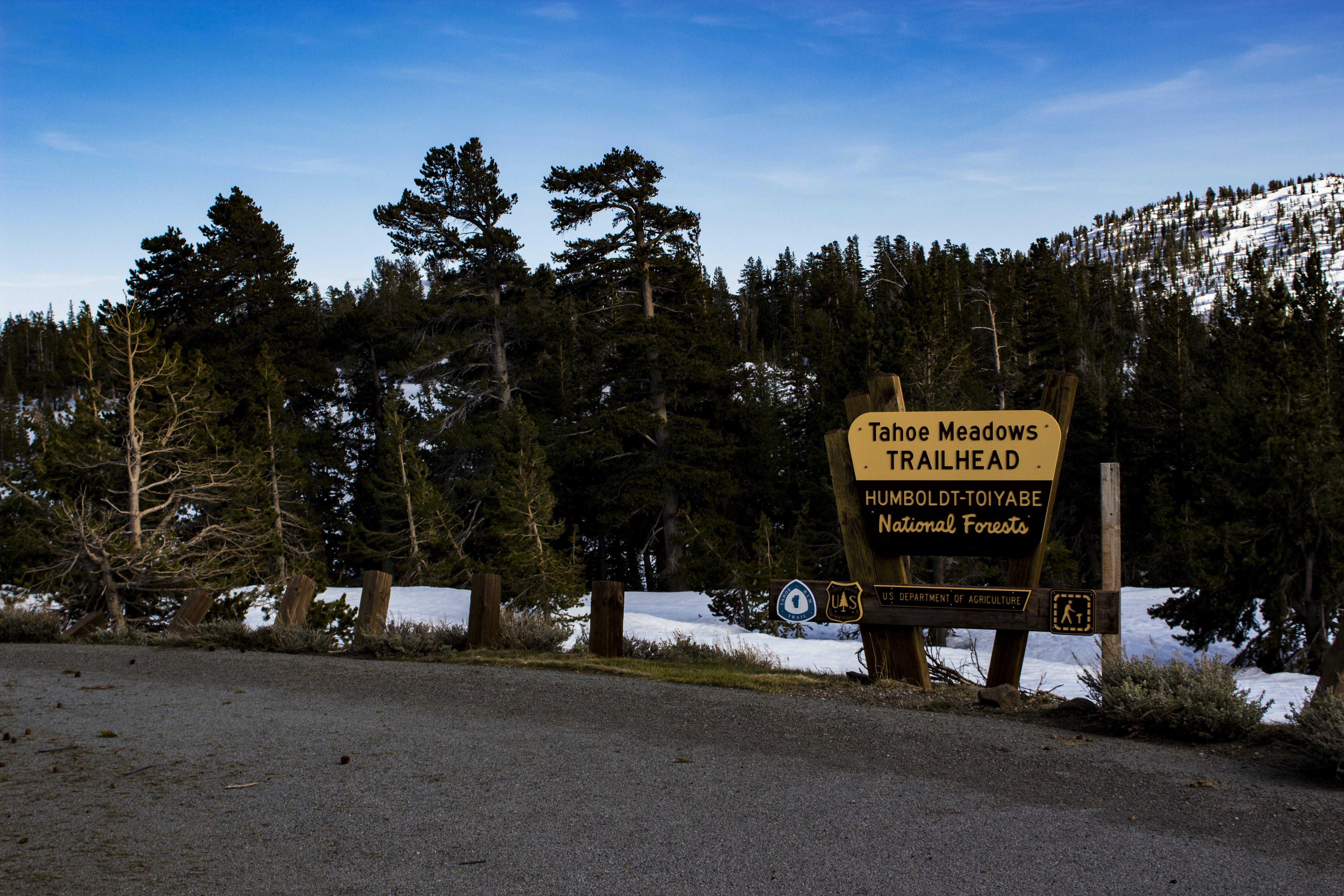 Tohoe Meadows Trailhead Signage
