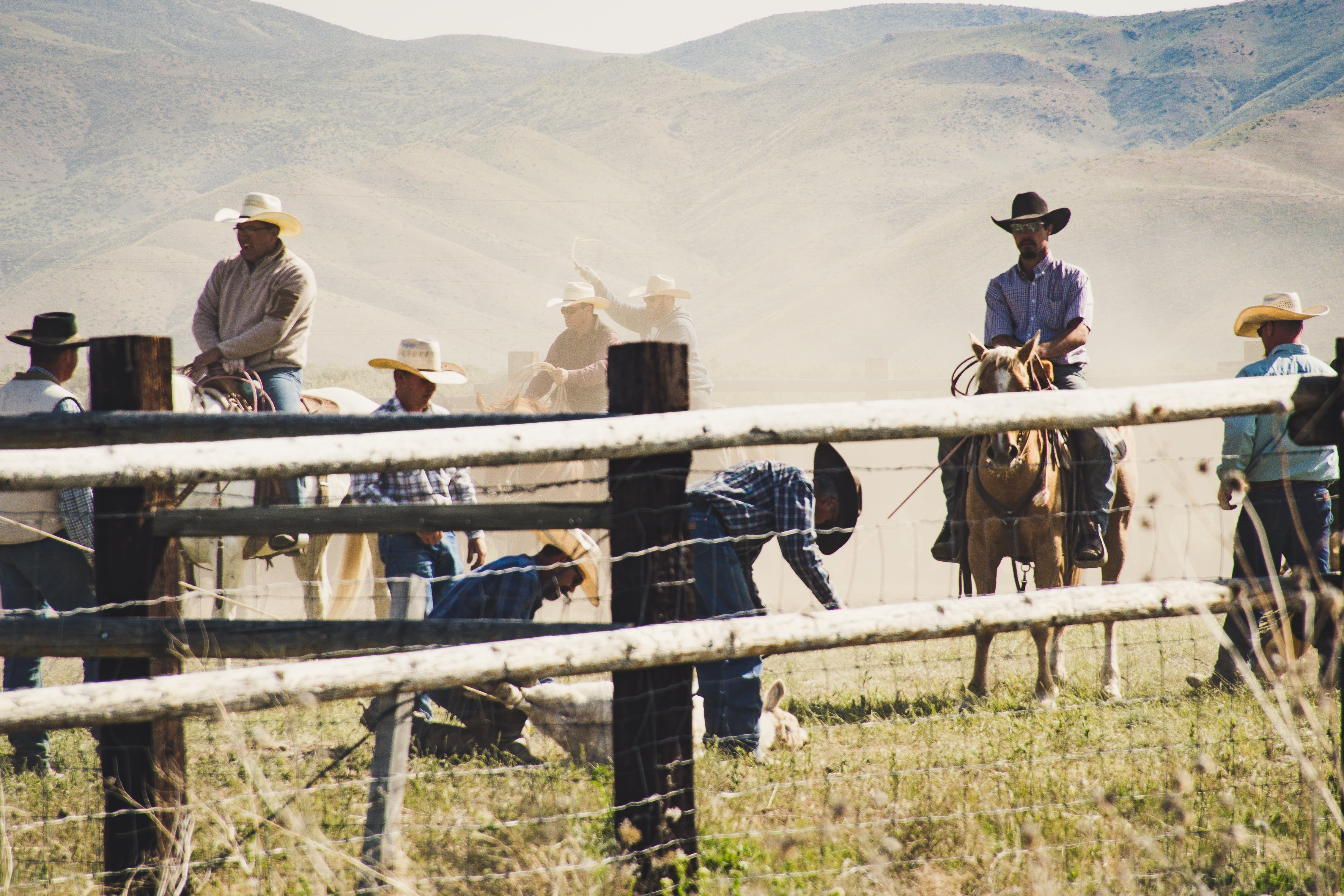 Cowboys Riding a Horse Near Gray Wooden Fence Taken during Dayitme