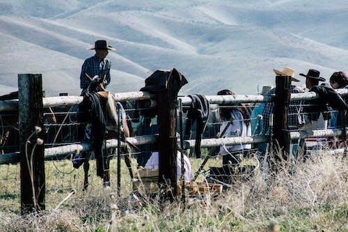 Základová fotografie zdarma na téma denní, denní světlo, farma, hory