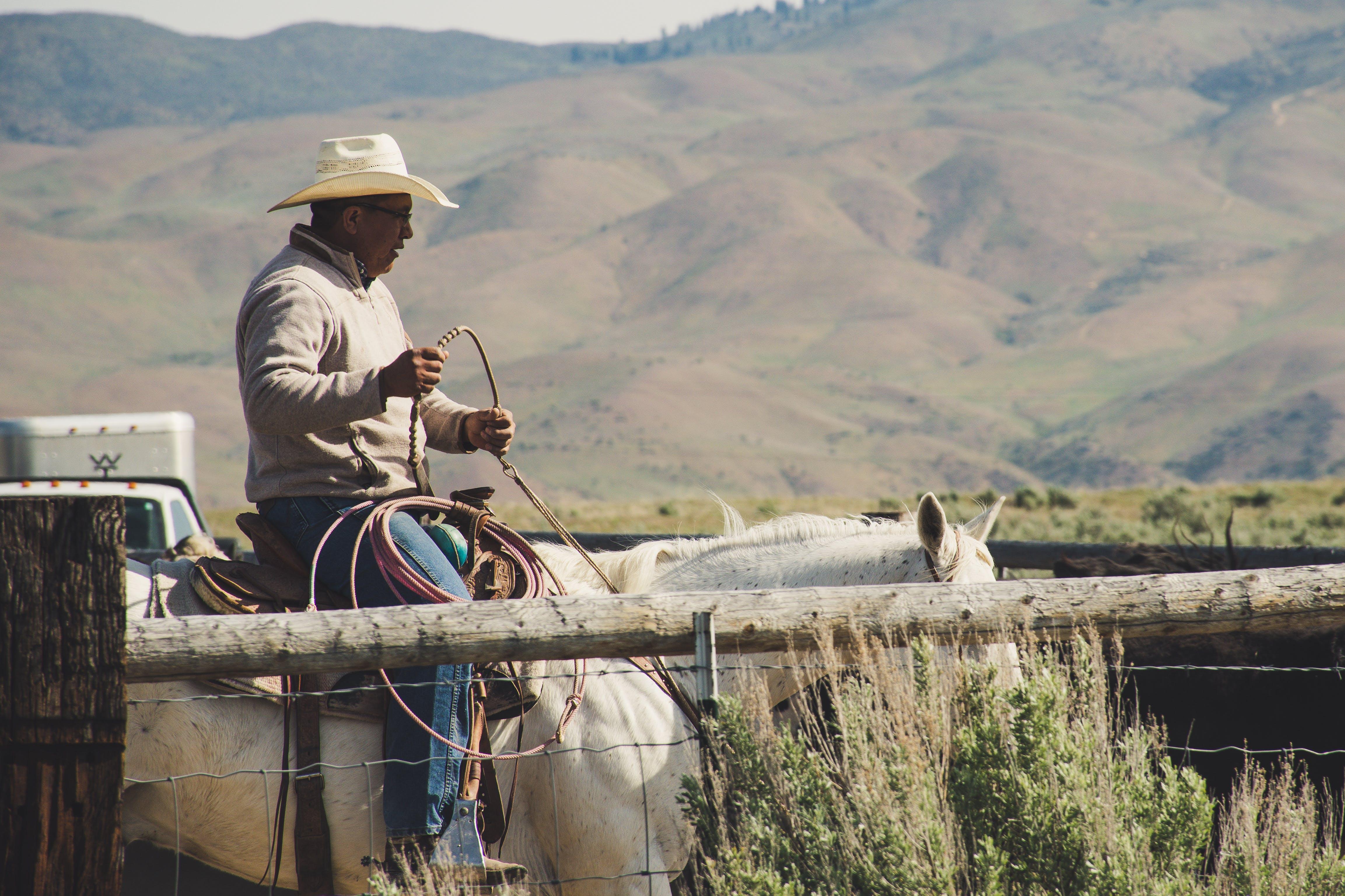 Photo of Man Riding on White Horse