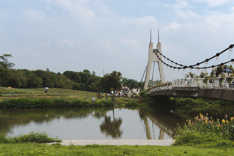 White Concrete Bridge on Body of Water Near Green Trees