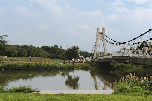Бесплатное стоковое фото с архитектура, берег реки, вода, деревья