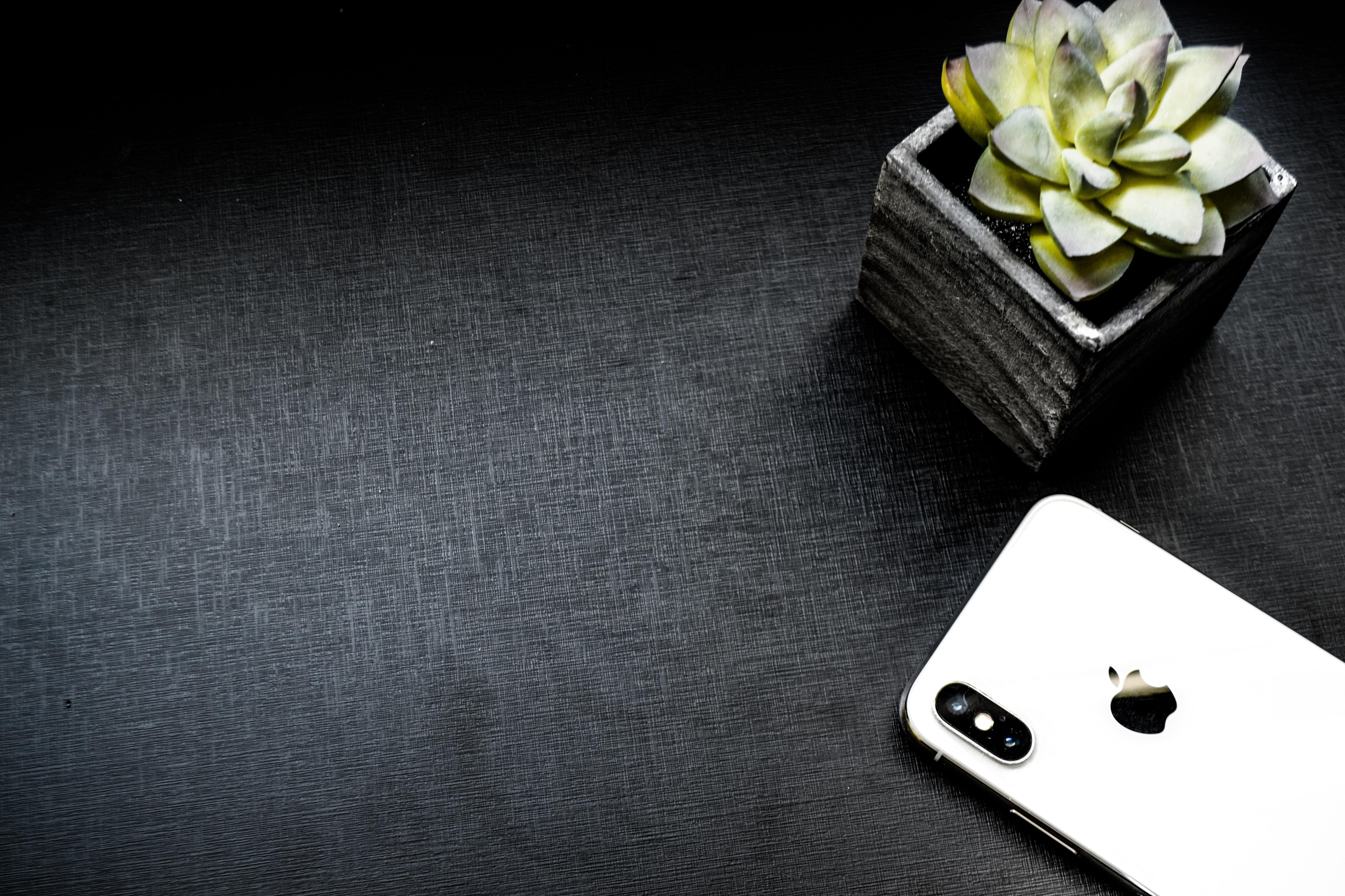 1000 interesting black background photos pexels free stock photos fetching more photos mightylinksfo