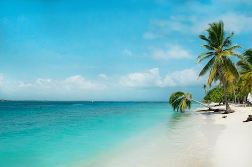 Ilmainen kuvapankkikuva tunnisteilla dramaattinen taivas, eksoottinen, hiekka, hiekkaranta
