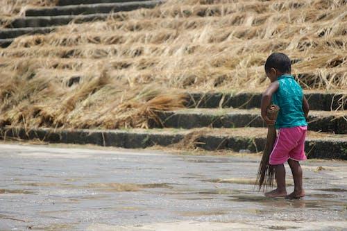 Foto d'estoc gratuïta de joc infantil, juguem sol
